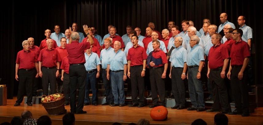 50 Männer – 1 Konzert